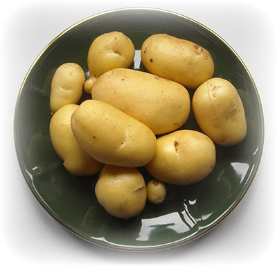 картофель на прикормку