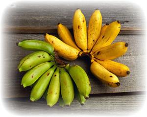 banany-v-pervye-mesyacy-2