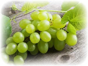 виноград при вскармливании