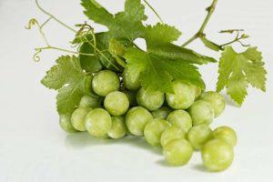 Можно ли есть виноград при беременности